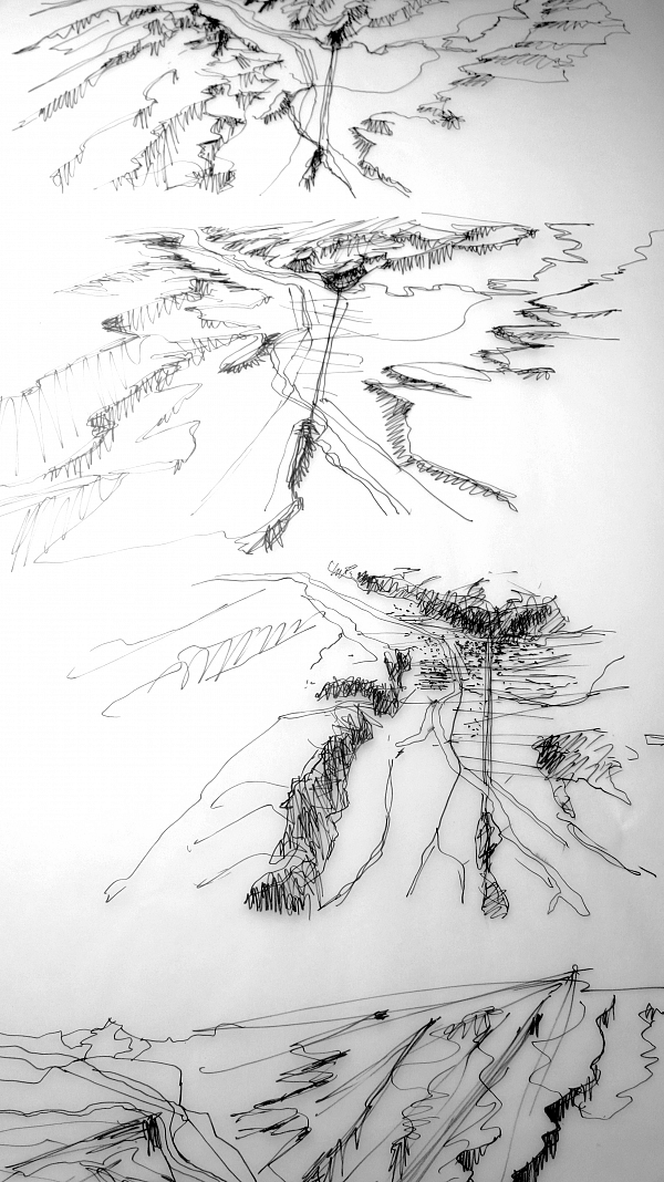 24---Paysages-verticaux-1_Amelie-Blachot.JPG